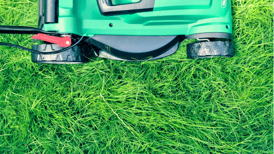 grass cutting with mower