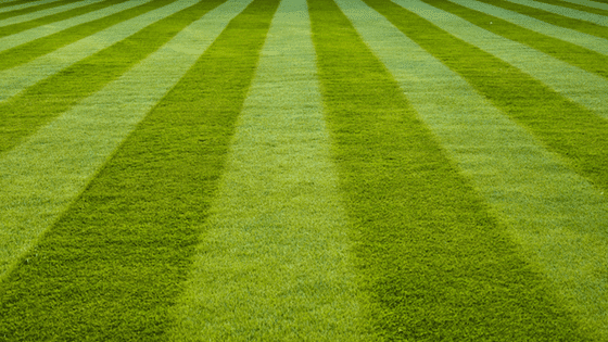 Pattern of mowing