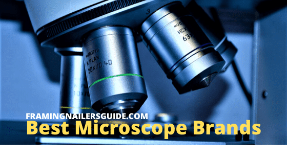 Best Microscope Brands 2020: Microscope Manufacturers List